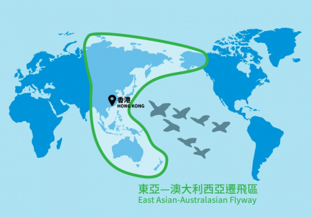 HKBWS is now officially the 38th member of the East Asian-Australasian Flyway Partnership (EAAFP)