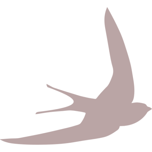 swift bird shape