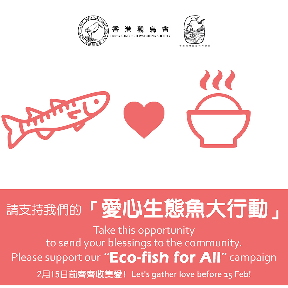 捐款 - 愛心生態魚大行動 Donation - Eco-Fish for All