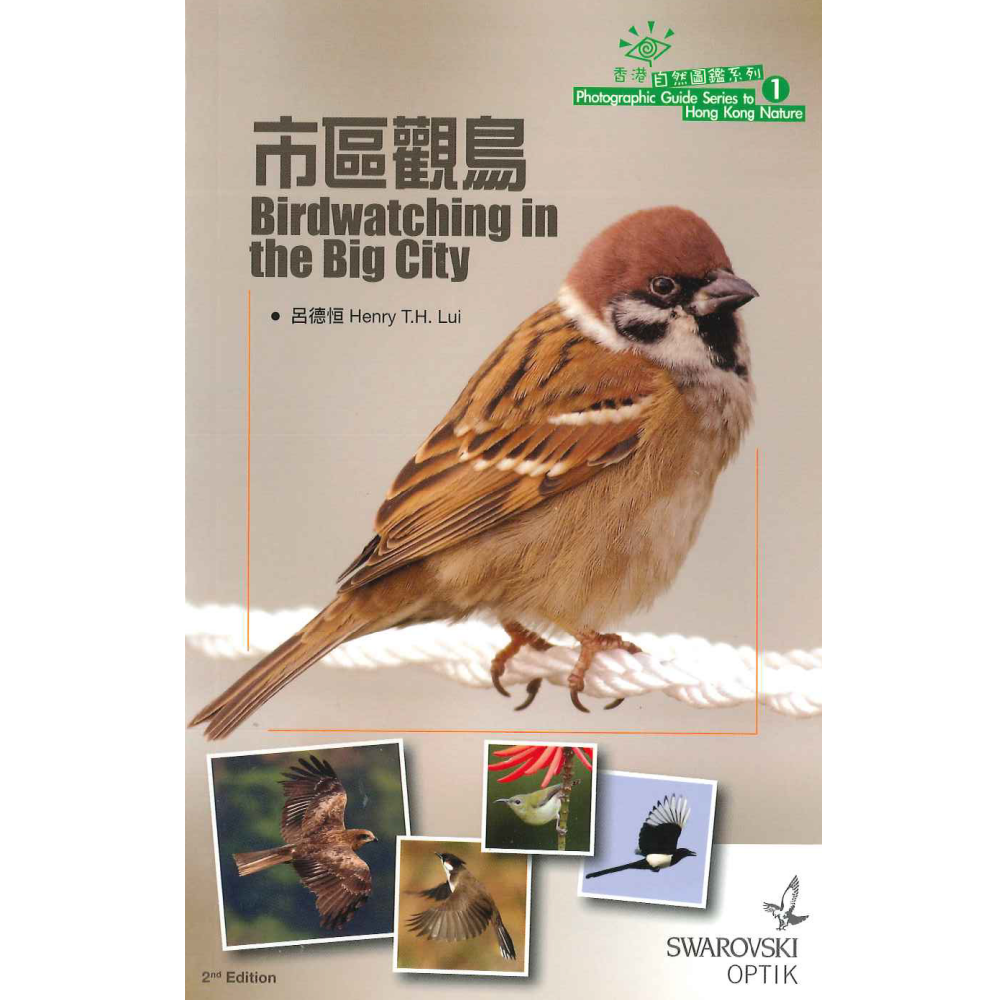 市區觀鳥 Birdwatching in the Big City