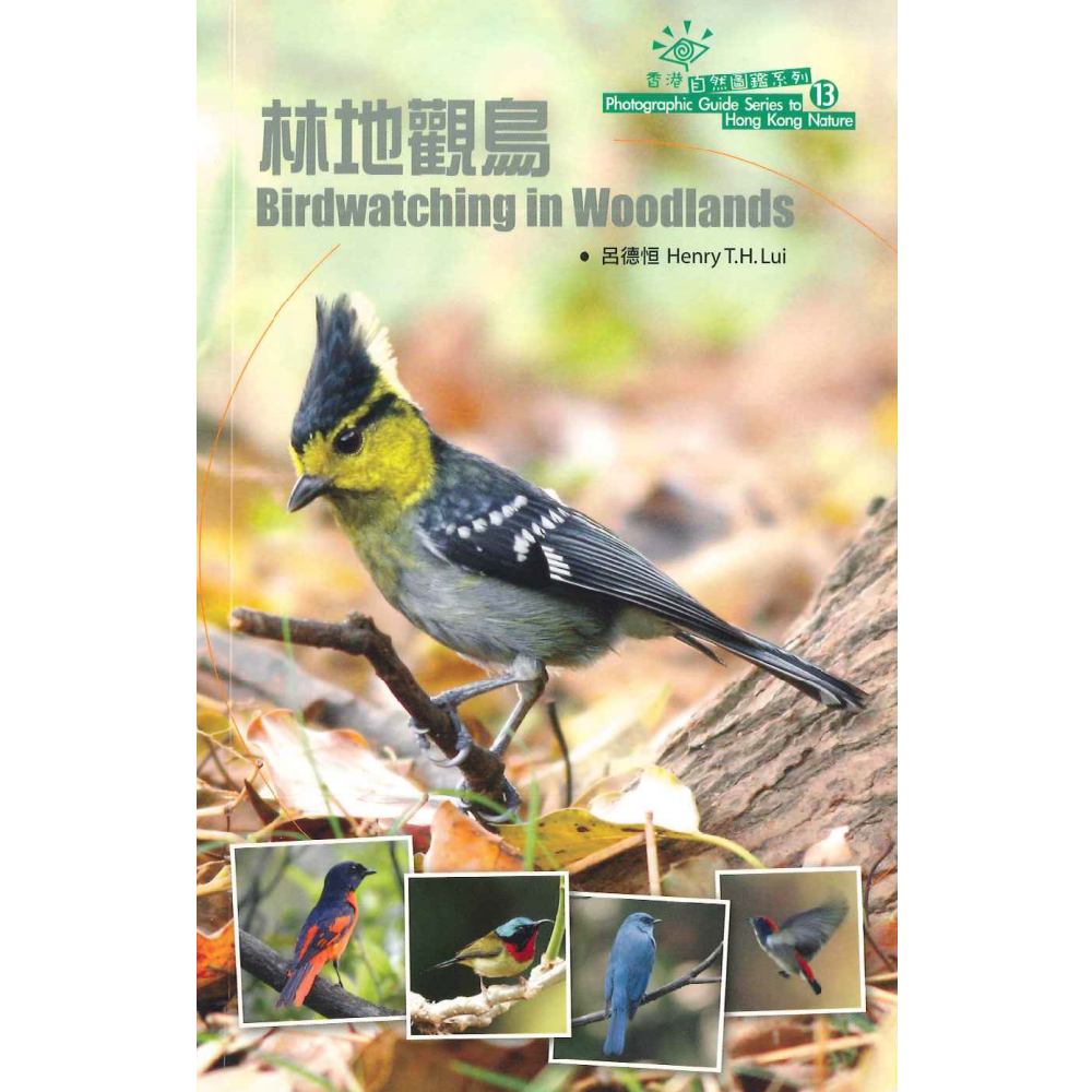 林地觀鳥 Birdwatching in Woodlands