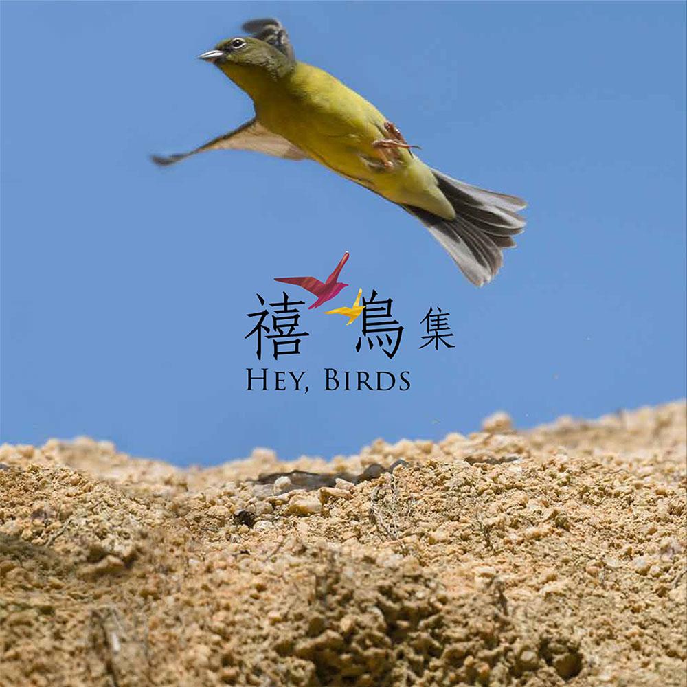 禧鳥集 Hey, Birds