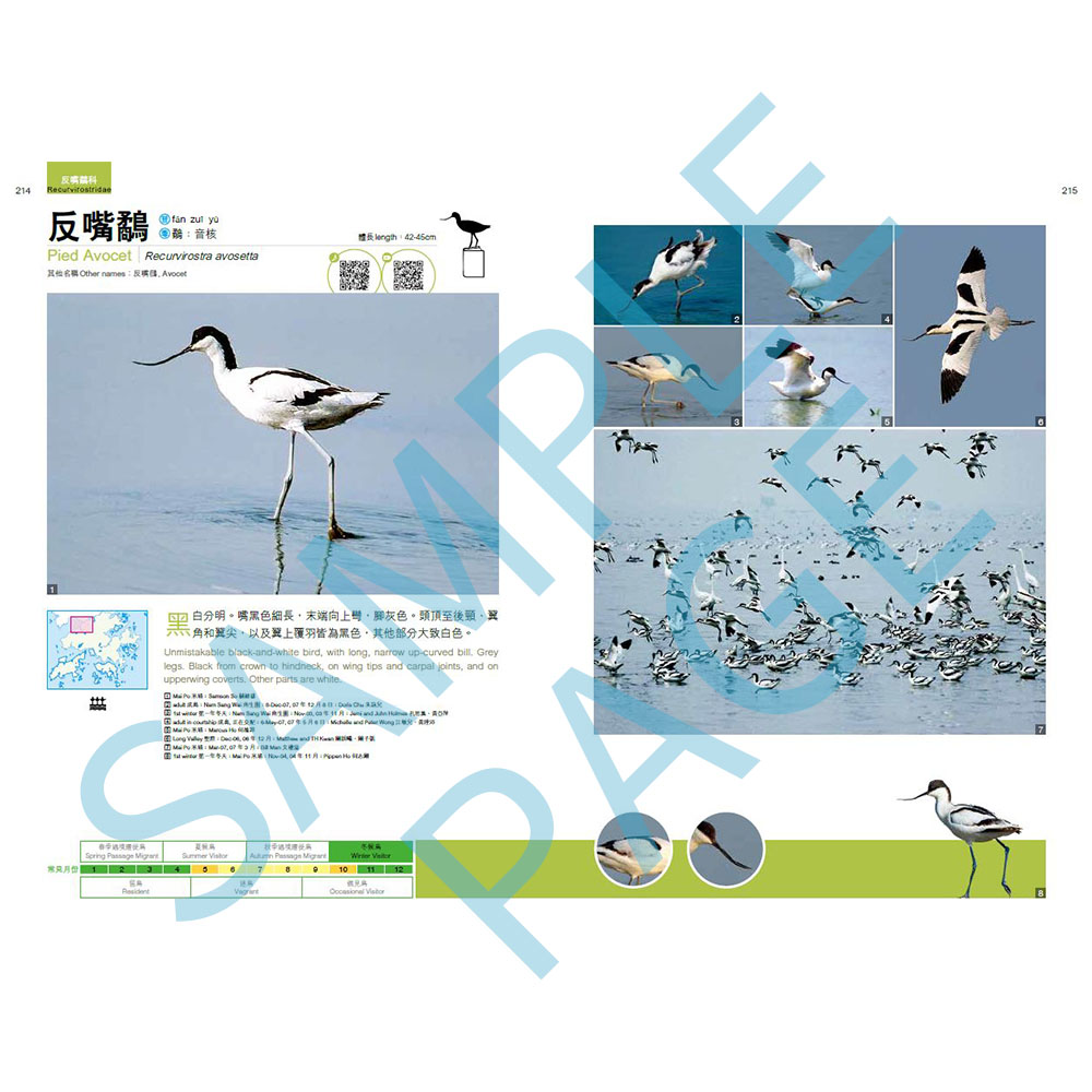 觀鳥系列01:香港觀鳥全圖鑑  A Photographic Guide to the Birds of Hong Kong 1