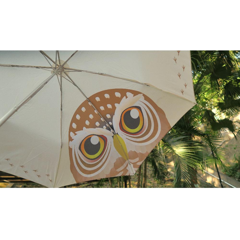 貓頭鷹雨傘 Owl Umbrella